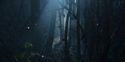 חדר בריחה מפחיד בהרצליה - כל מה שרציתם לדעת